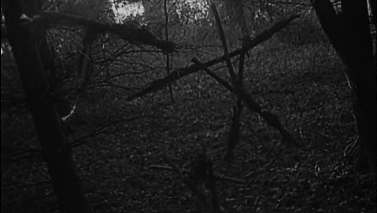 Confessions of a Fear Junkie: The Blair Witch Project